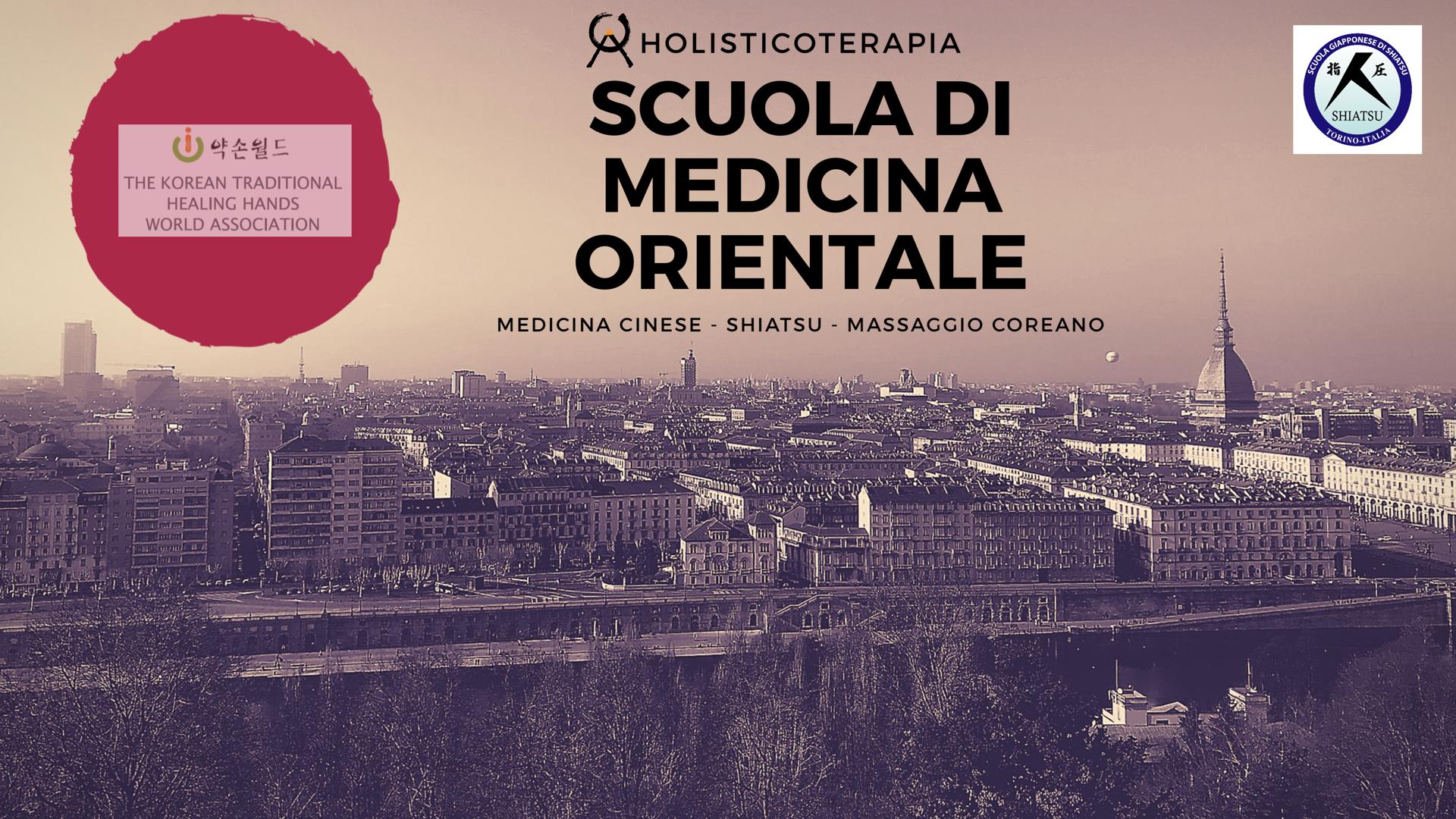 Holisticoterapia - Meridian System 2019 - 2020