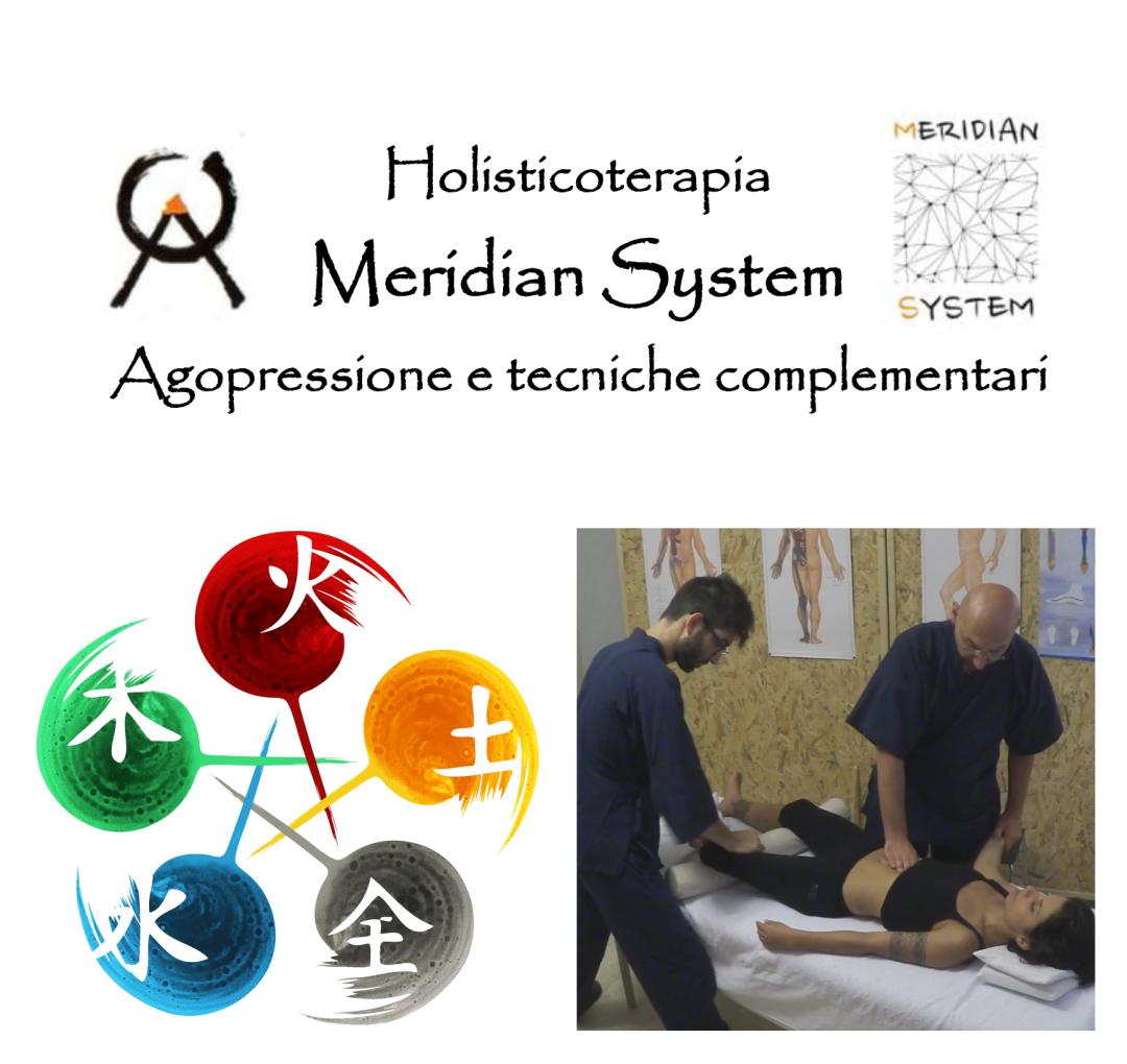 Meridian System - Tecniche di Trattamento Orientale