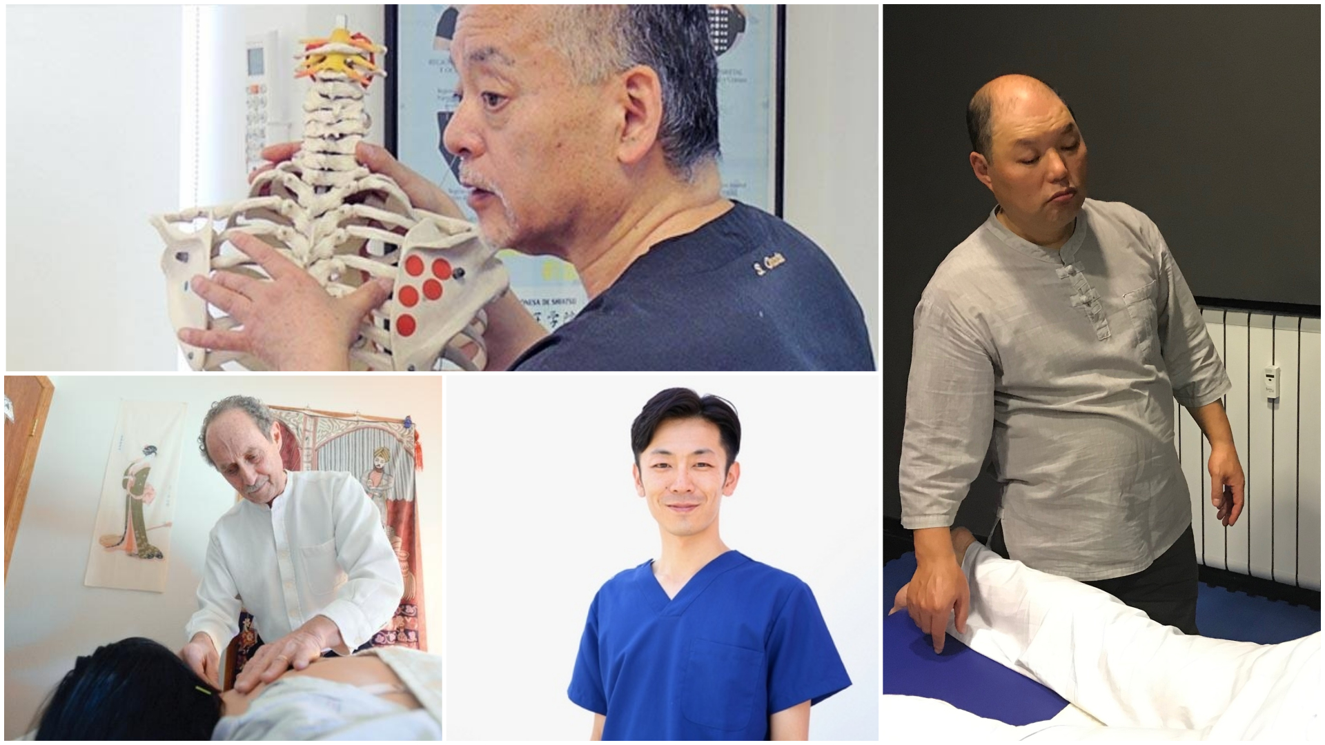 Seminari internazionali  Holisticoterapia - Meridian System 2019