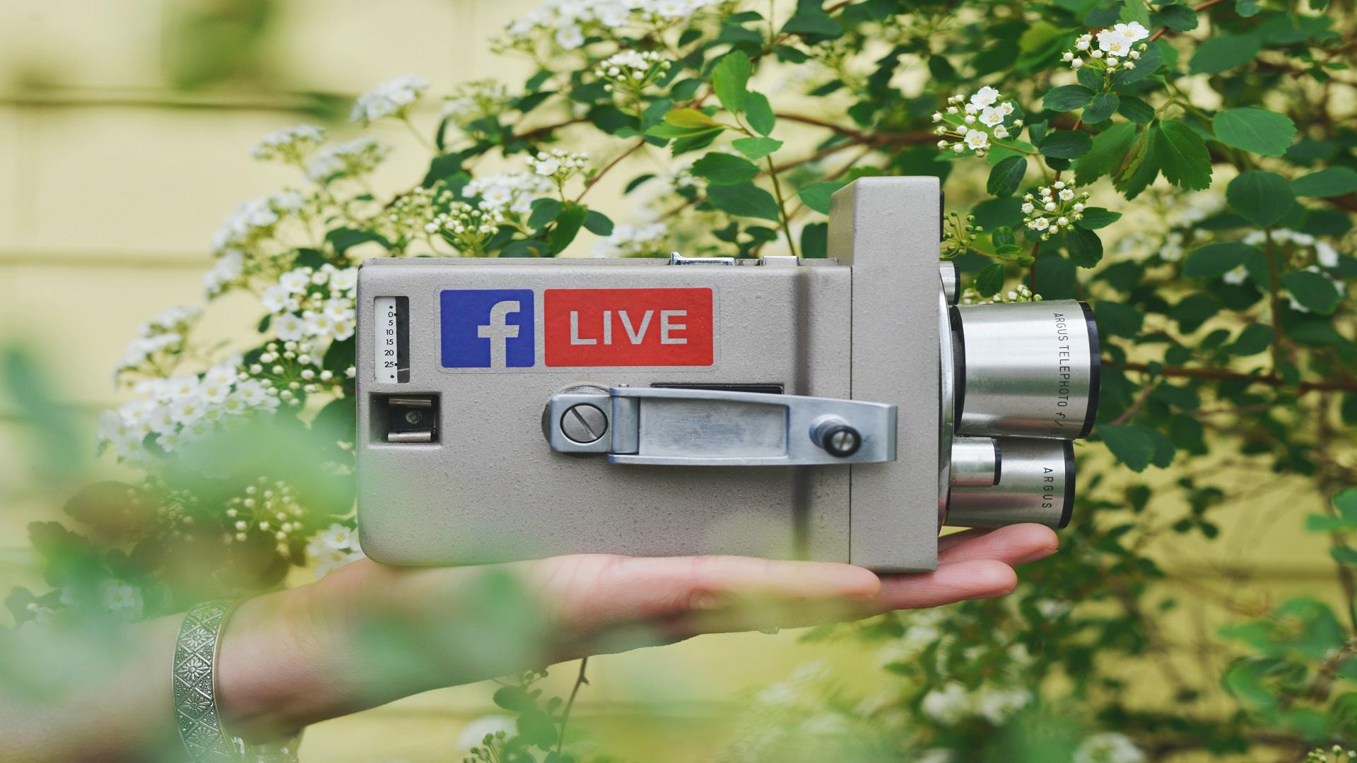 WEBINAR LIVE - Martedì 17 Novembre ore 12:00